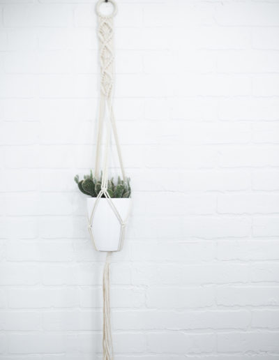 The Nest Salon | Hanging pot with Cactus